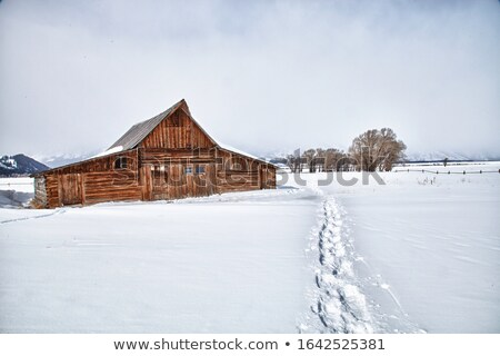 Stock photo: settlement in winter landscape