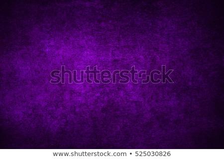 аннотация · Purple · одежды · Top · мнение · ткань - Сток-фото © furmanphoto