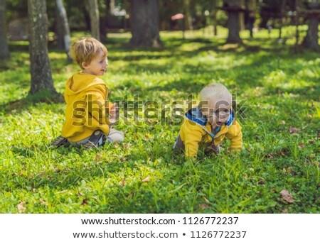 Iki mutlu kardeşler sarı sonbahar park Stok fotoğraf © galitskaya