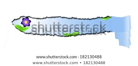 Torn Paper With Imitating Blue Sky Space For Text Isolated Stok fotoğraf © impresja26