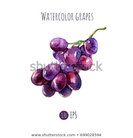 Stock photo: Red grapes on white background. Vector illustration
