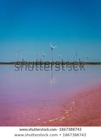 Natuurlijke Rood water meer zout mooie Stockfoto © ElenaBatkova
