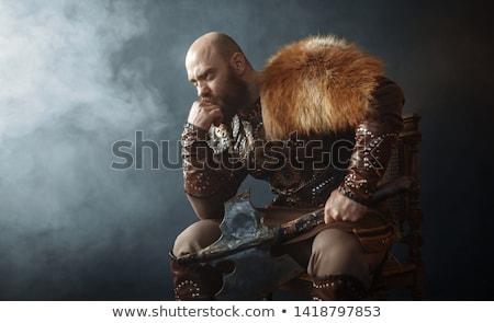 Férfi viking illusztráció férfi igazság verekedés Stock fotó © colematt