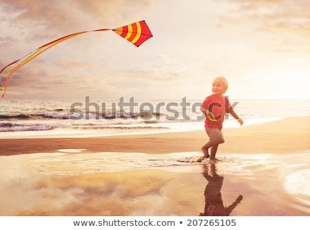 Foto stock: Feliz · voador · pipa · praia · pôr · do · sol