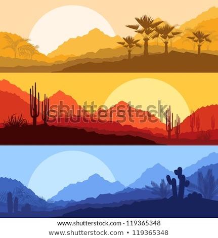 Güzel dağ çöl manzara doku yaprak Stok fotoğraf © meinzahn