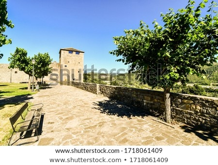 Castle fort wall in Ainsa village Aragon Pyrenees Stock photo © lunamarina