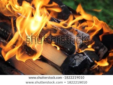 Lareira ardente combustível dentro isolado Foto stock © robuart