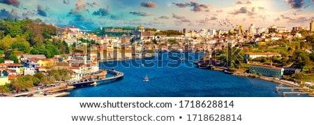View Of Porto Oporto City And Douro River Portugal Stock photo © diego_cervo