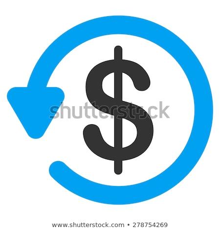 возврат инвестиции вектора икона изолированный белый Сток-фото © smoki