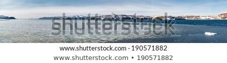 Crepe hielo océano Rusia primavera naturaleza Foto stock © amok