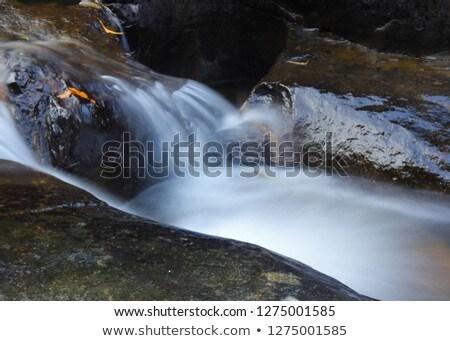 hidden small waterfall in deep tropical forest stock photo © wetzkaz