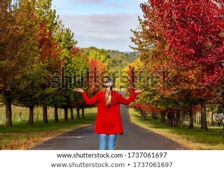 Femme feuillus arbres automne magie Photo stock © lovleah