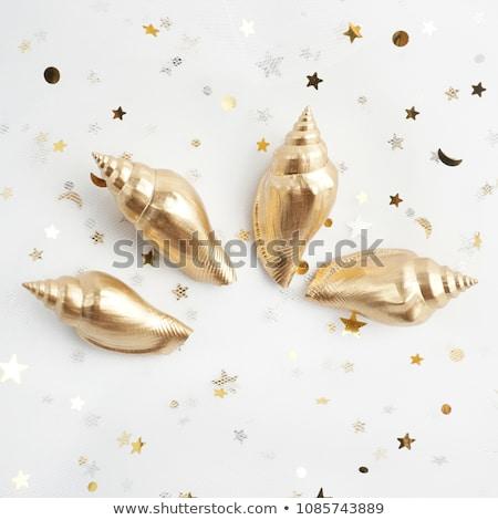 ouro · concha · isolado · branco · arte · animal - foto stock © Leonardi