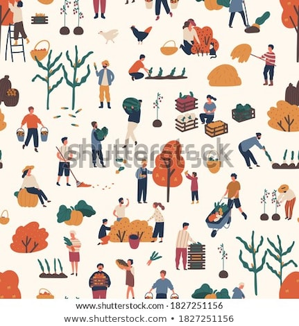 Gardening tools and fruits flat seamless background pattern Stock photo © vectorikart