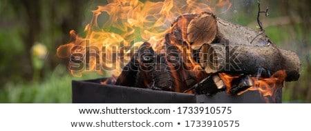 kıyılmış · yangın · ahşap · orman · duvar - stok fotoğraf © zurijeta