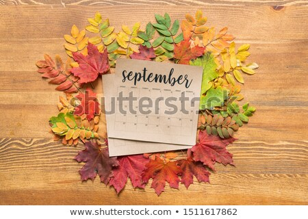 Overview of September calendar surrounded by colorful autumn leaves Stock photo © pressmaster