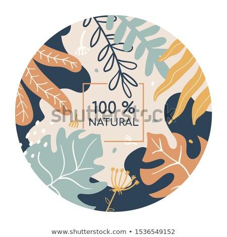 100 por ciento naturales colorido medios de comunicación social banner Foto stock © Decorwithme