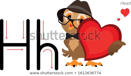 Learning english alphabet letter H. Owl in Hat holding Heart Stock photo © orensila