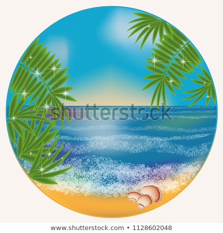 Tenger hullám hínár pálmafák szalag vektor Stock fotó © pikepicture