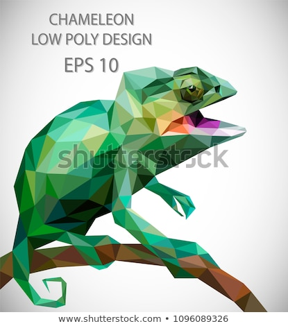 Vector design of snake in low poly style.  Stock photo © ColorHaze