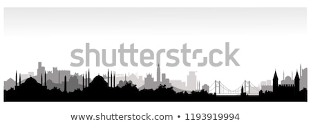 Silhouette of Istanbul cityscape Stock photo © 5xinc