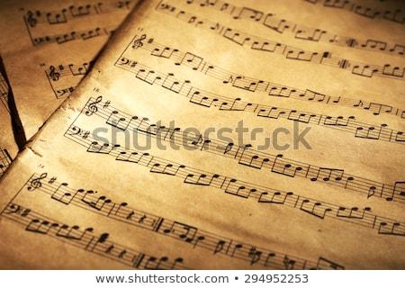 old sheet music stock photo © ozaiachin