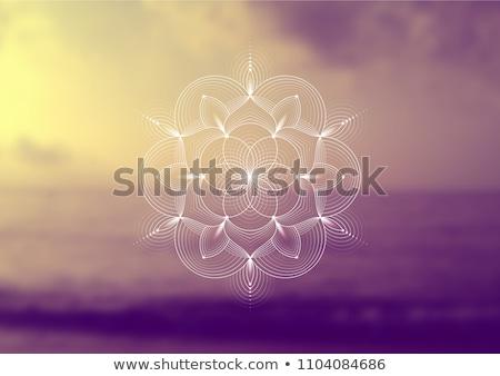 геометрия · цветы · ромашка - Сток-фото © Galyna