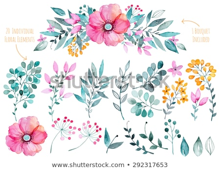 flower border ideas pictures - watercolour flower stock photo © G P Galyna