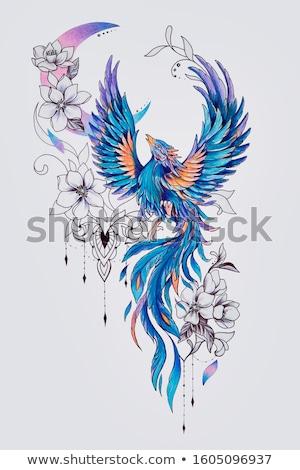phoenix · pena · chamejante · preto · fogo - foto stock © dagadu