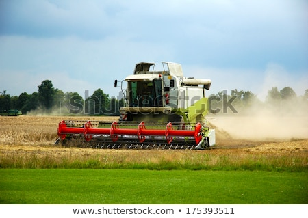 Combine harvester and thresher stock photo © foto-fine-art
