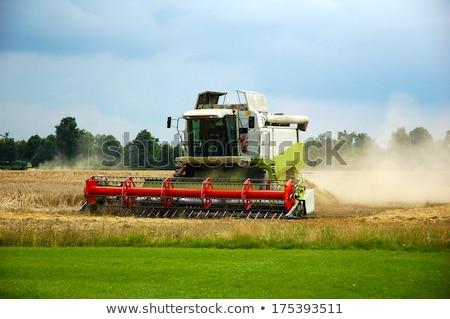 Combine harvester and thresher Stock photo © foto-fine-art