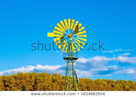 風車 青空 コピースペース 再生可能エネルギー 空 青 ストックフォト © foto-fine-art