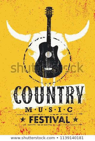 ülke müzik akustik ahşap gitar çimenli Stok fotoğraf © foto-fine-art
