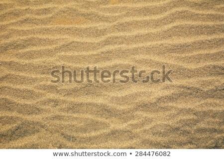 песок воды пустыне дождь Storm ветер Сток-фото © Armisael