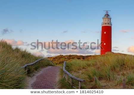 Texel beach Stock photo © Bullysoft