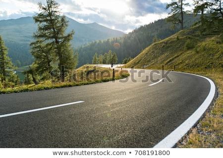 Highway in mountains Stock photo © Andriy-Solovyov