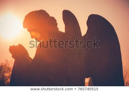 Foto stock: Guardião · anjo · estátua · cara · bíblia · vida
