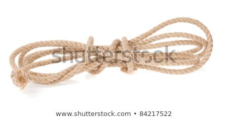 noose isolated on white stock photo © shutswis