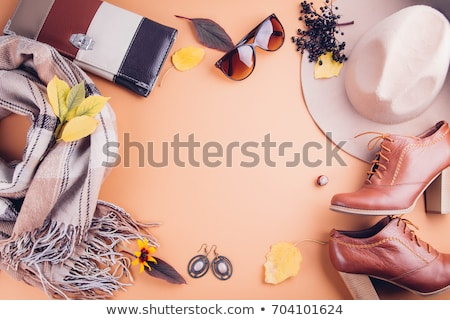 Women's bag, shoes and gloves stock photo © alekleks