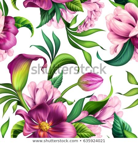 Orchidea tulipano modello di fiore colorato piazze tulipani Foto d'archivio © cteconsulting
