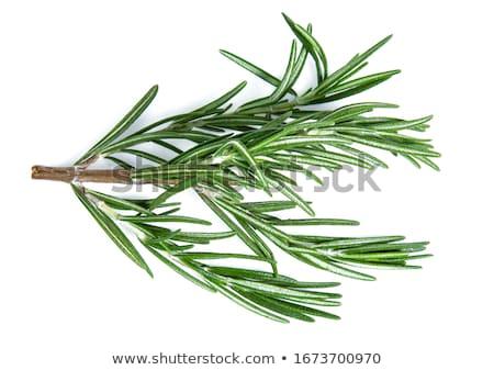 misto · ervas · isolado · branco · fundo · branco - foto stock © sarahdoow