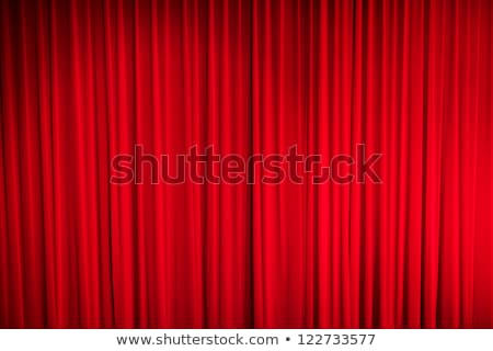 red curtain pattern Stock photo © italianestro