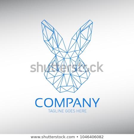 rabbit or hare head vector illustration stock photo © hermione