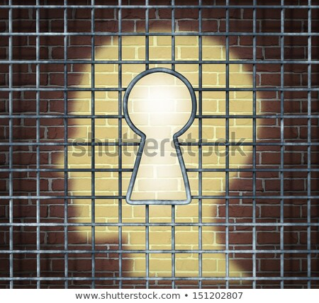 Creative Freedom Key Stock photo © Lightsource