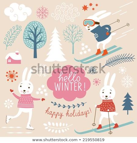Rabino esquiador detalhado desenho animado ilustração vetor Foto stock © derocz