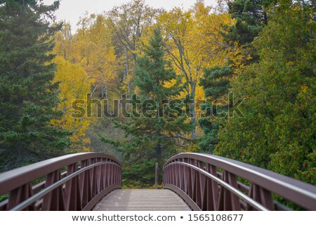 Shores of Lake Superior at Gooseberry State Park in Vertical Stock photo © wolterk