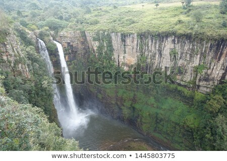 Mac · waterval · rivier · South · Africa · water · bos - stockfoto © intsys