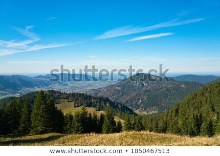 синий · холмы · расстояние · пейзаж · свет - Сток-фото © hraska