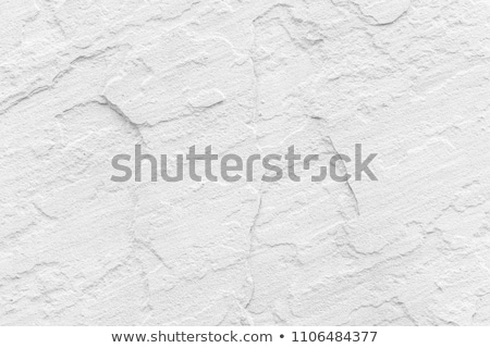 Surface of natural gray spotted stone as background Stock photo © scenery1