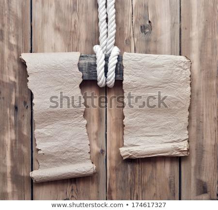fából · készült · pólus · textúra - stock fotó © inxti